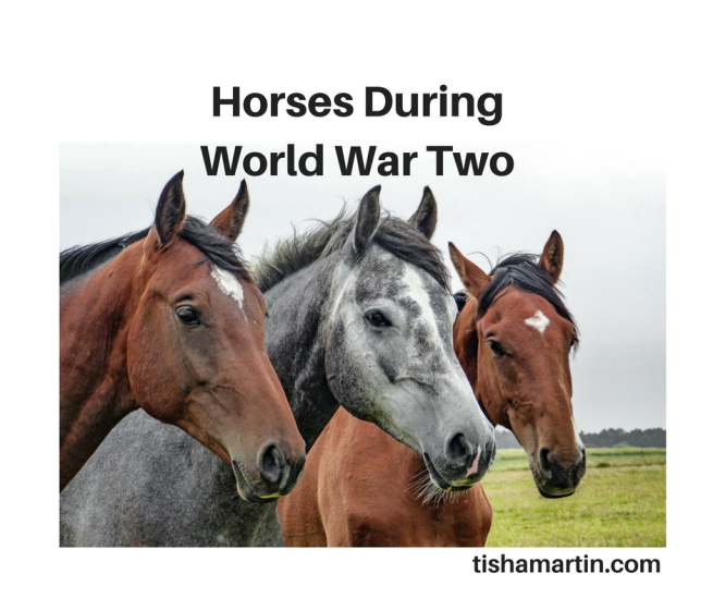 horses-world-war-two-barbara-fox-tisha-martin-historical-fiction-history-horse